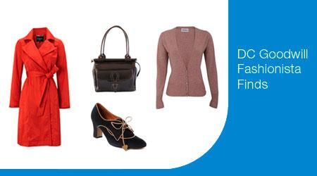 Shop Goodwill Fashionista Finds