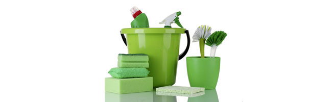 Environmentally Green Products