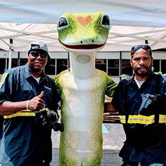 Transportation Drivers and GEICO Gecko
